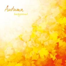 美丽的秋天的背景03矢量素材