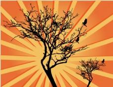阳光与树矢量背景