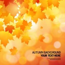 美丽的秋天的背景02矢量素材