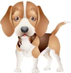 棕色的小狗