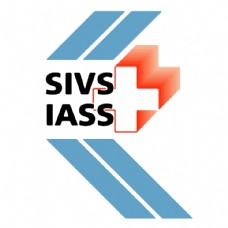 SIV国际会计准则