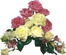 玫瑰 红色玫瑰花 花边图片