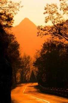 黄昏中的金色山路图片