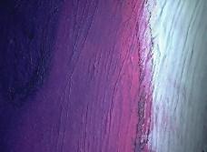 143款油彩、多彩纹理高质量材质贴图免费下载-50