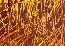 2009油漆/油画/水彩3d材质贴图免费下载第四辑40款-34
