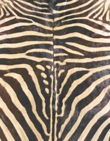 常用的织物和毯类贴图毯类3d贴图素材 216