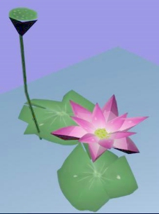 植物荷花装饰素材室内用品素材植物3d模型下载 3