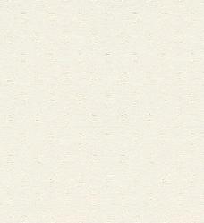 常用的壁纸贴图壁纸 1173