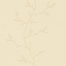 大自然纹理素材下载纹理素材 65