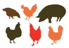 公鸡设计图