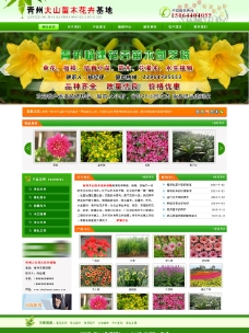 大山苗木花卉基地图片