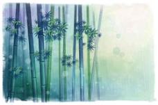高清绿色概念竹林素材
