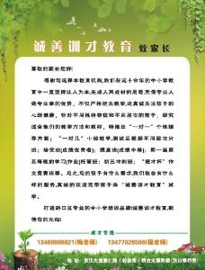 教育培训机构宣传单页