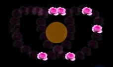 变化的玫瑰