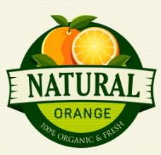 橘子橙子图片
