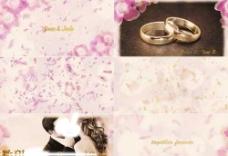 唯美花瓣粒子AE婚礼相册模板