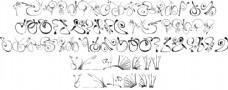 SL花体字体