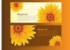 太阳花卡片矢量图
