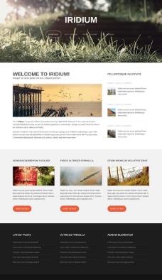 杂草丛生HTML5网站模板