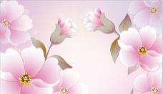 简约花卉图片
