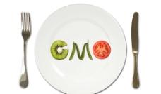 轉基因食品圖片