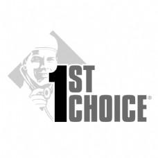 第一个选择