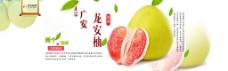 龙安柚海报