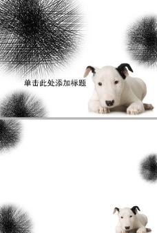 一只可爱的宠物狗ppt模板
