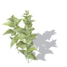 植物花草装饰素材室内装饰用品素材室内装饰素材 15