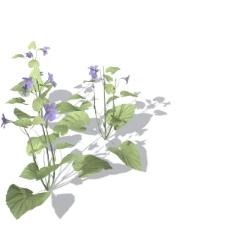植物花草装饰素材室内装饰用品素材室内装饰素材 17