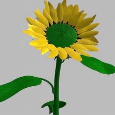 植物花草装饰素材室内装饰用品素材花草3d模型下载 4