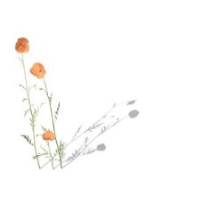 植物花草装饰素材室内装饰用品素材花草模型 8