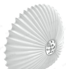 3D现代特色贝壳造型饰品模型