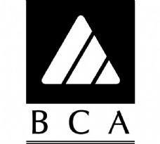 Billiard_Congress_of_America logo设计欣赏 Billiard_Congress_of_America运动LOGO下载标志设计欣赏